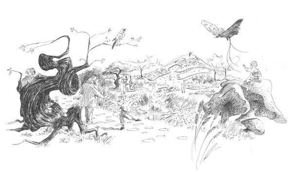 04 illustration garden 13027 o