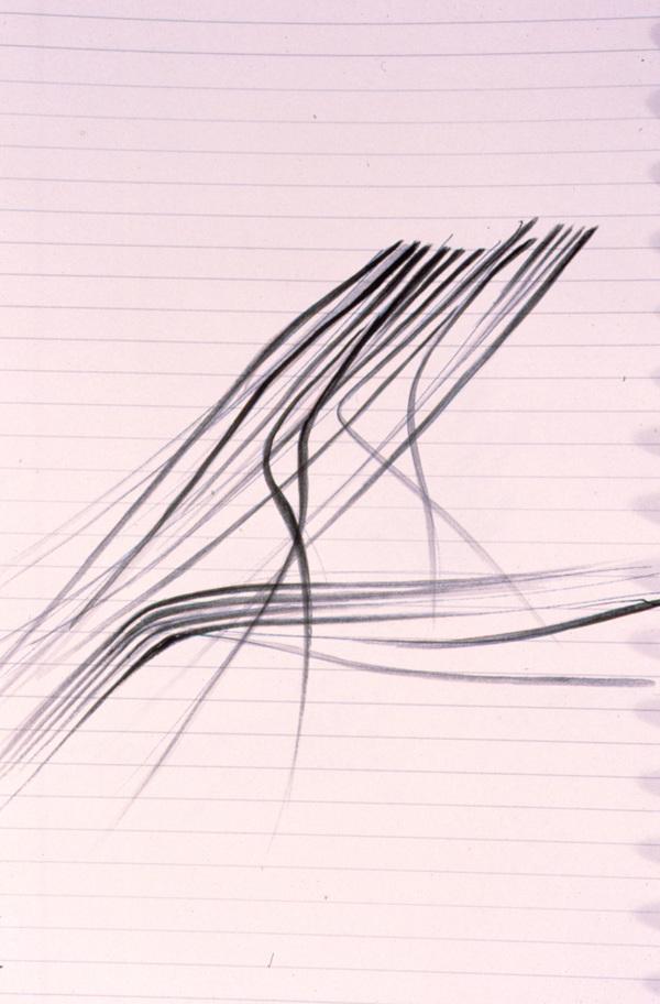 965 maxxi sketch 01