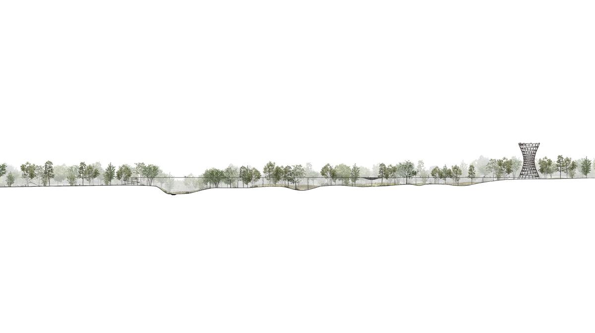 tree top walking sjælland