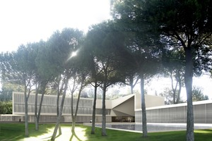 Iese  árboles portada(2)